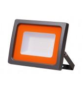 Прожектор светодиодный 10 Вт, 160-260В, (855Лм, холодный белый свет) JAZZWAY PFL-SC 6500К (5004863)